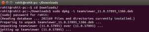 teamviewer-ubuntu-2