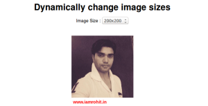 How to set image height and width dynamically using jquery.