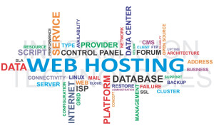 8 point must consider before choosing a Web hosting provider