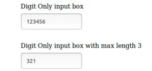 Allow-Digits-Input-Box-Angular-directive